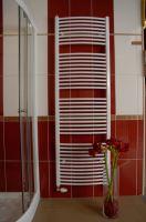 Koupelnový radiátor THERMAL TREND KDO 600x1320