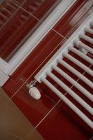 Koupelnový radiátor THERMAL TREND KDO 750x1850