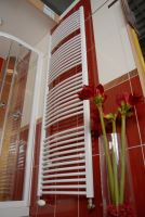 Koupelnový radiátor THERMAL TREND KDO 750x1680