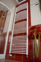 Koupelnový radiátor THERMAL TREND KDO 450x1320